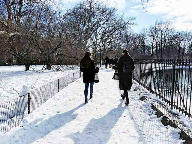 Central Park in Snow (5)