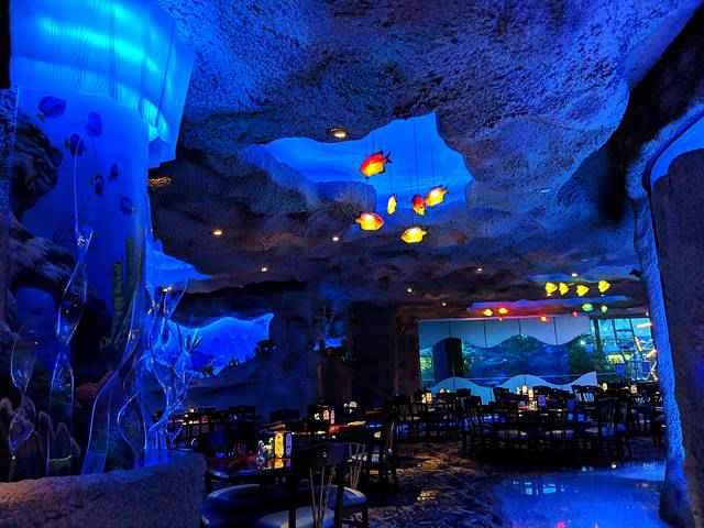 Downtown Aquarium (19)