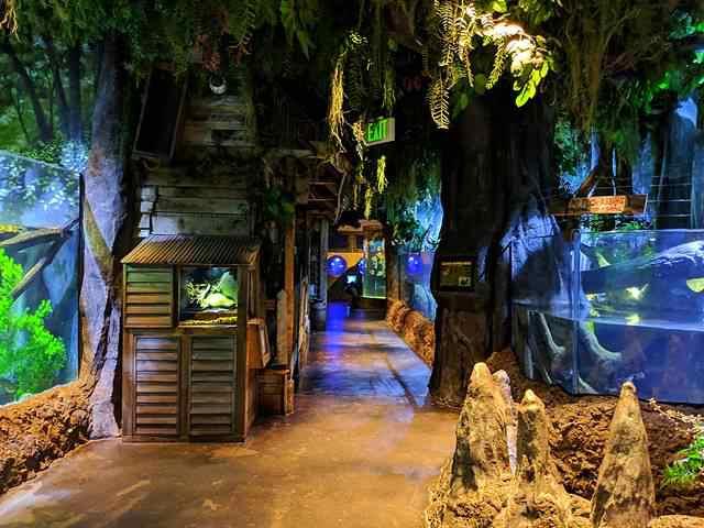 Downtown Aquarium (2)