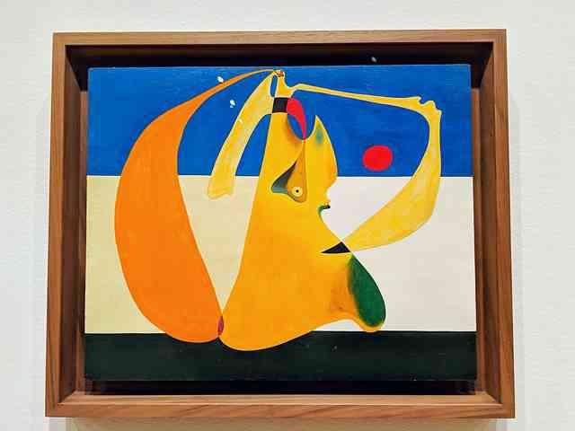 Joan Miro (20)