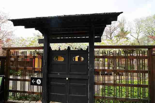 Brooklyn Botanic Garden NY (12)
