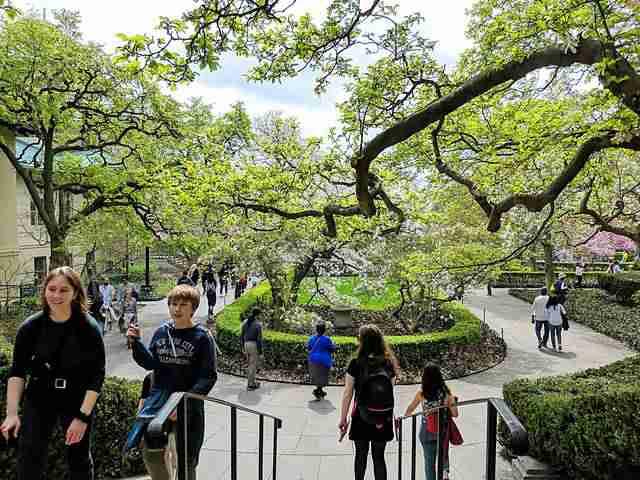 Brooklyn Botanic Garden NY (20)