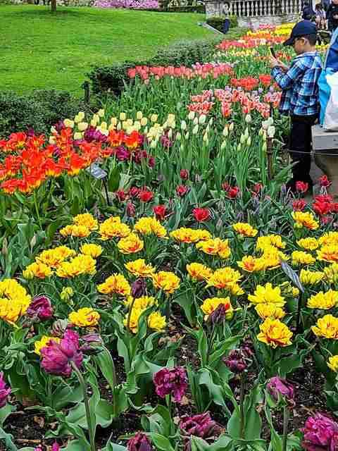 Brooklyn Botanic Garden NY (27)