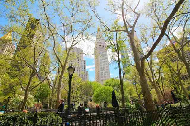 Madison Square Park NY (12)