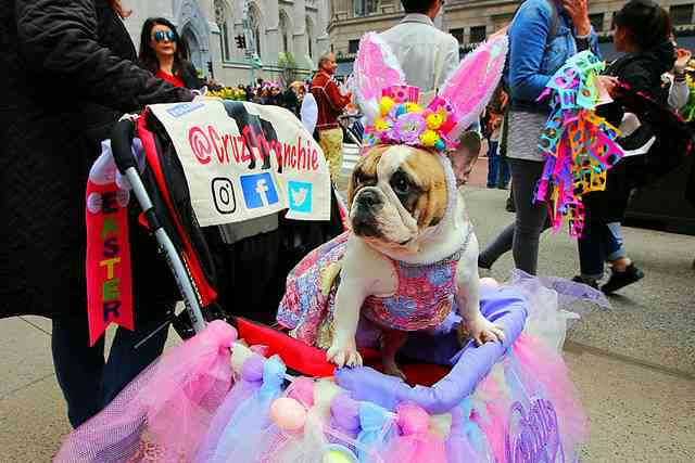 NYC Easter parade (6)