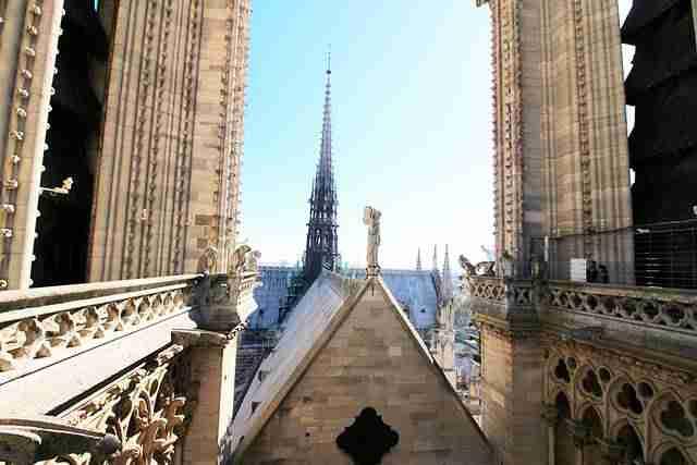 Notre Dame Paris (13)