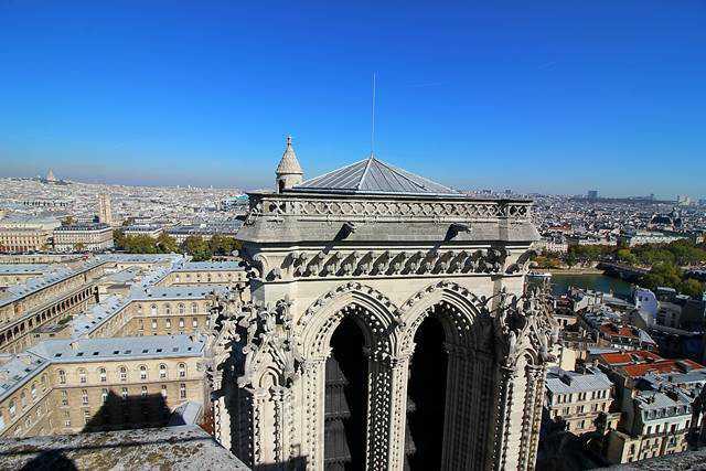 Notre Dame Paris (17)
