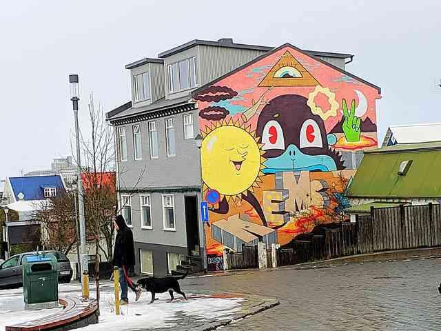 Reykjavik Iceland (12)