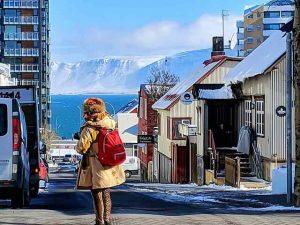 Reykjavik Iceland (4)