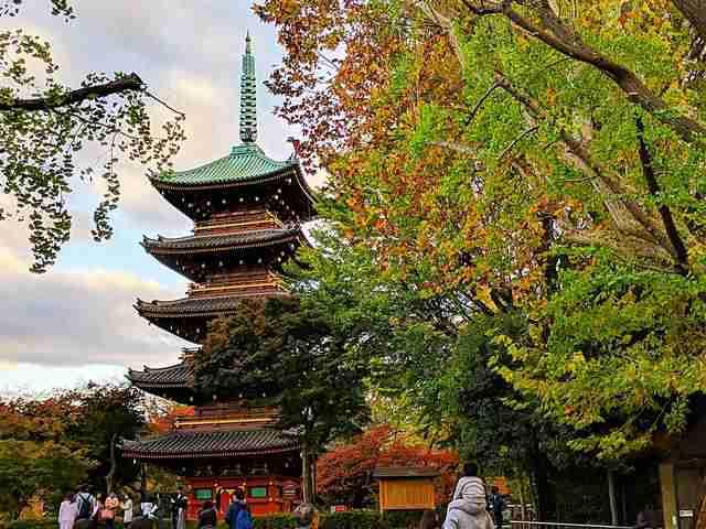 Tokyo Travel Spot (13)