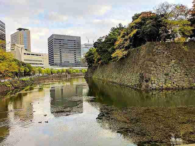 Tokyo Travel Spot (34)