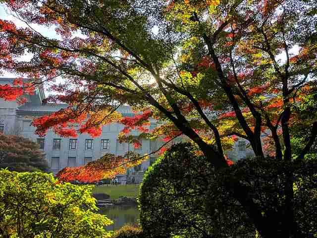 Tokyo Travel Spot (66)
