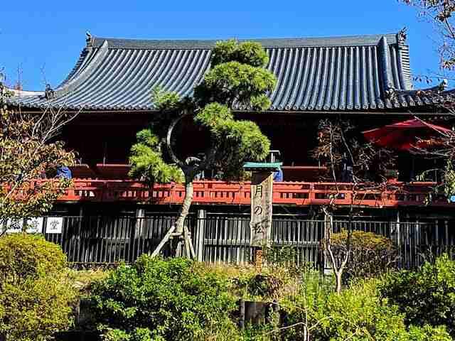 Tokyo Travel Spot (7)