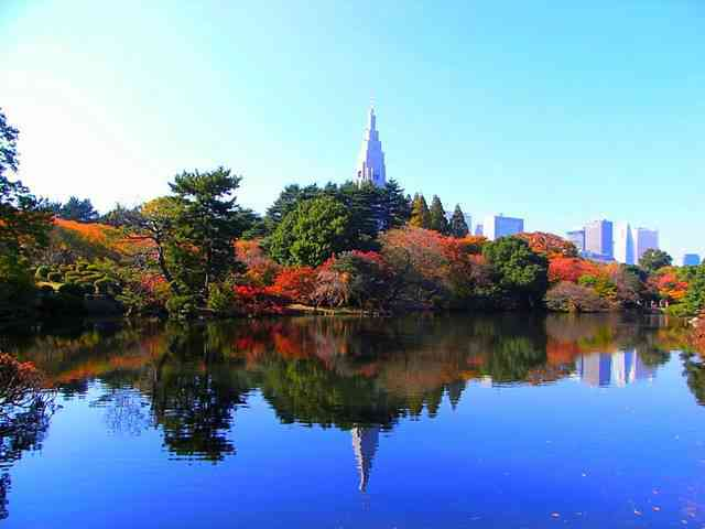 Tokyo Travel Spot (83)