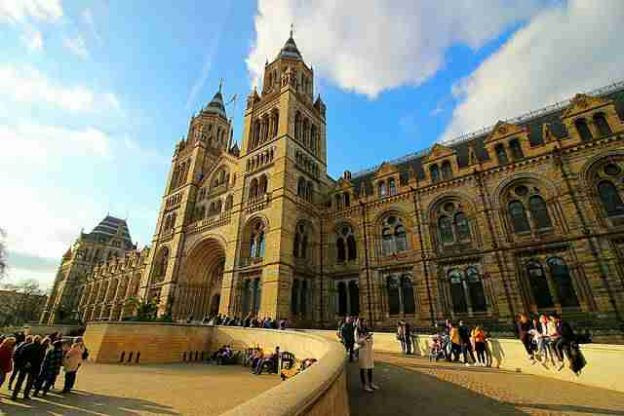 Natural History Museum London (1)