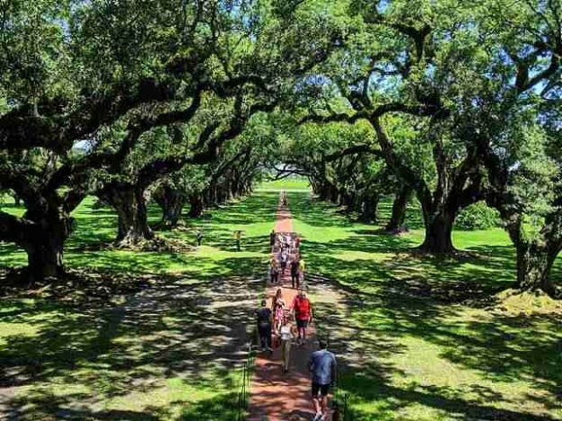 Oak Alley Plantation (1)