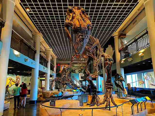 The Academy of Natural Sciences of Drexel University (1)