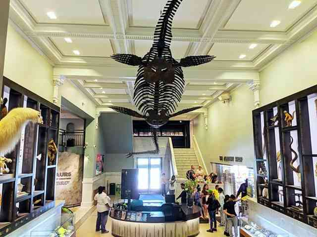 The Academy of Natural Sciences of Drexel University (16)
