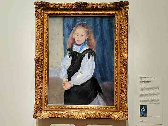 The Philadelphia Museum of Art (19)