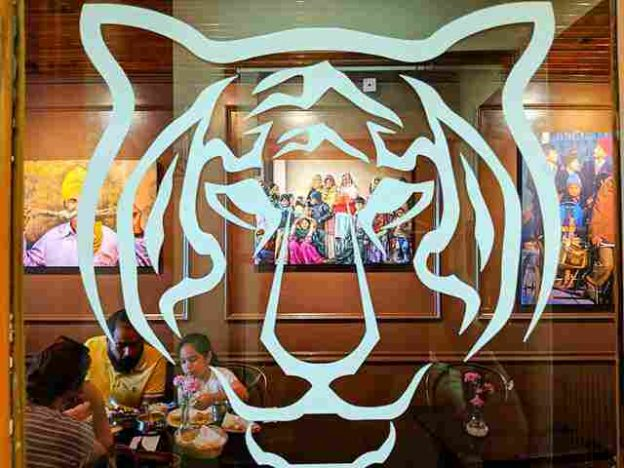 Bengal Tiger NYC (12)