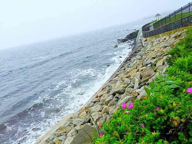 Newport Rhode Island (4)