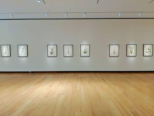 New Britain Museum of American Art (26)