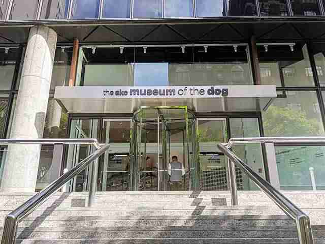 AKC Museum of the Dog NY (1)