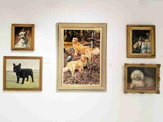 AKC Museum of the Dog NY (15)