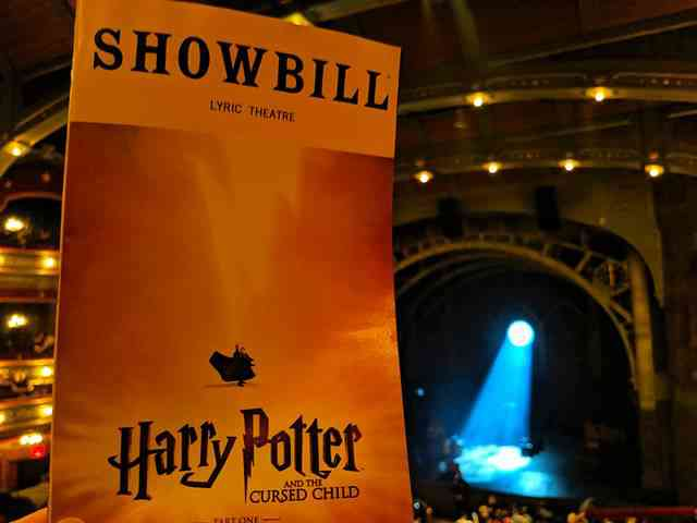 Harry Potter Broadway Musical (14)