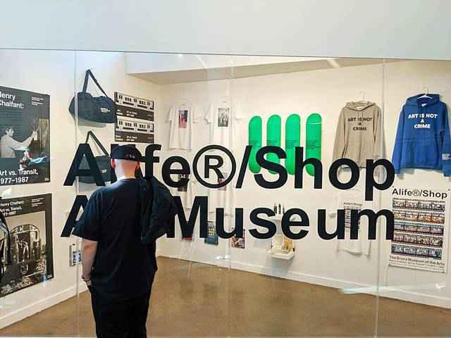 Bronx Museum of the Arts NY (22)