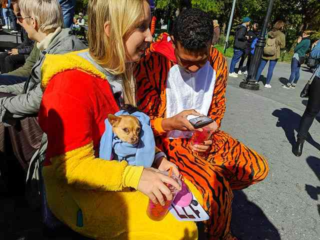 Dog Day Halloween Costume Party Parade Washington Square Park (8)