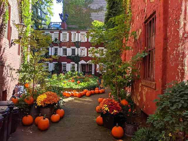 Halloween NYC (6)