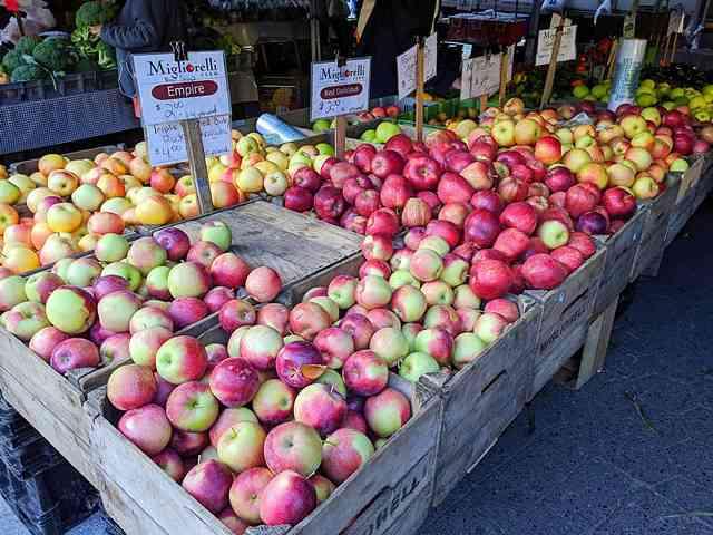 Union Square Greenmarket NY (18)