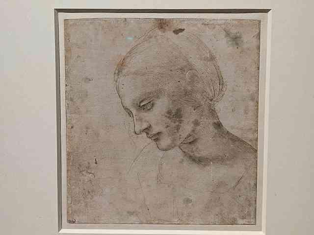 Leonardo da Vinci Louvre (49)