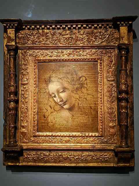 Leonardo da Vinci Louvre (8)