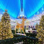 Oculus WTC NY Christmas (1)