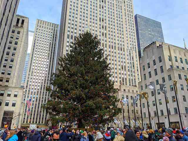 Rockefeller Center Christmas Tree (2)
