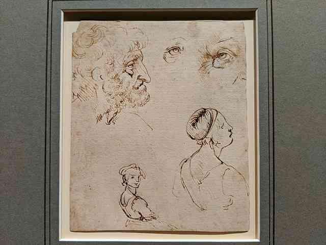 Verrocchio National Gallery Washington DC (9)