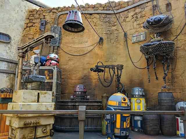 Star Wars Disney World (4)