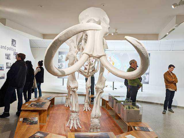 Guggenheim Museum NYC (21)