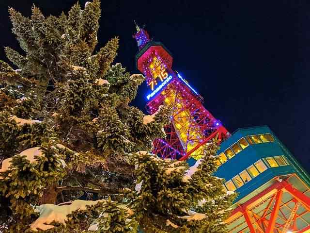Sapporo Snow Festival (15)