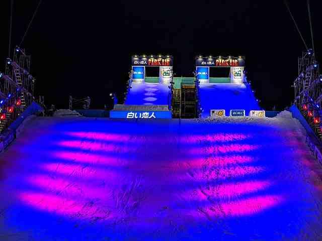 Sapporo Snow Festival (27)