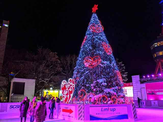 Sapporo Snow Festival (28)