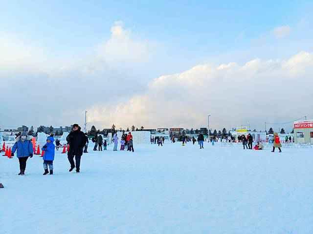 Sapporo Snow Festival (29)