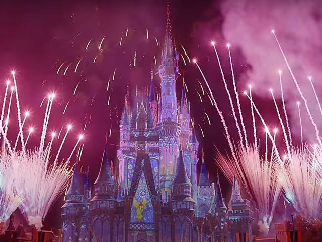 Disney World Fireworks (1)