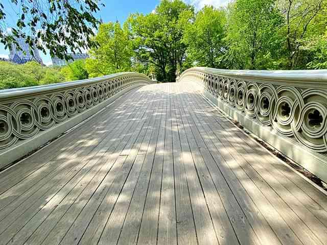 Central Park NY (10)