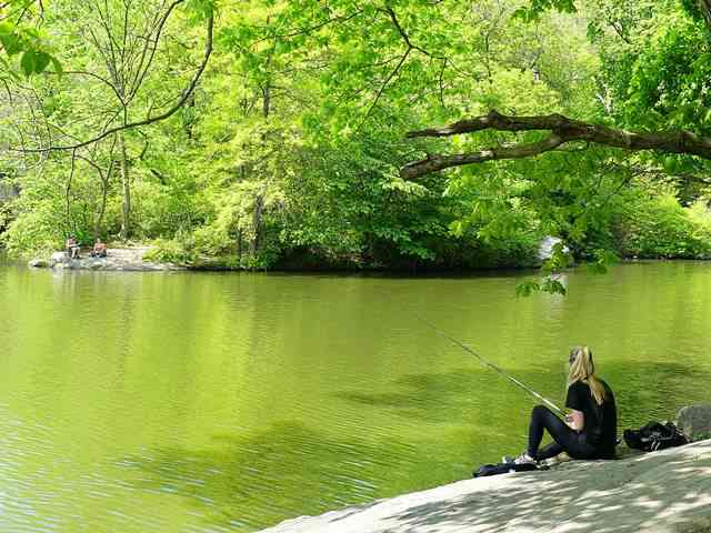 Central Park NY (12)