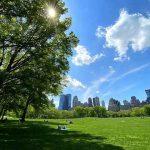 Central Park NY (6)