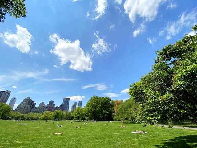Central Park NY (7)
