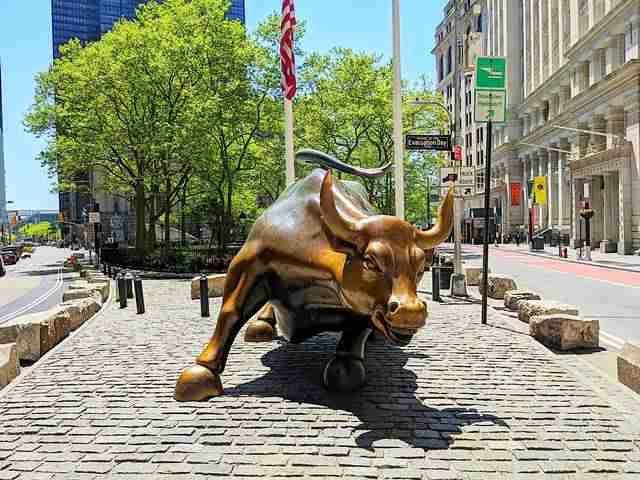 Charging Bull Wall Street NY (2)